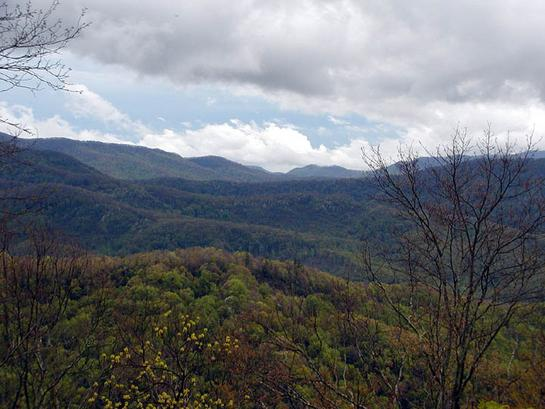 View from the Cherohala Skyway