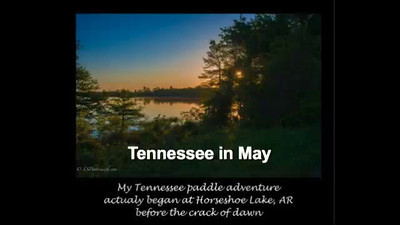 Tennessee in May-Medium