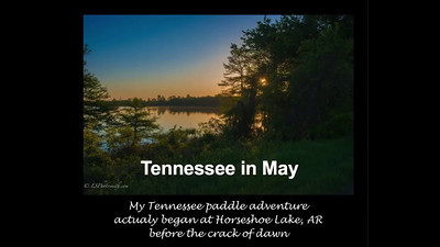 Tennessee in May-Display