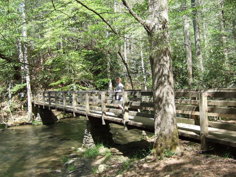 Abrams Falls Trail, Cades Cove, Smoky Mt National Park