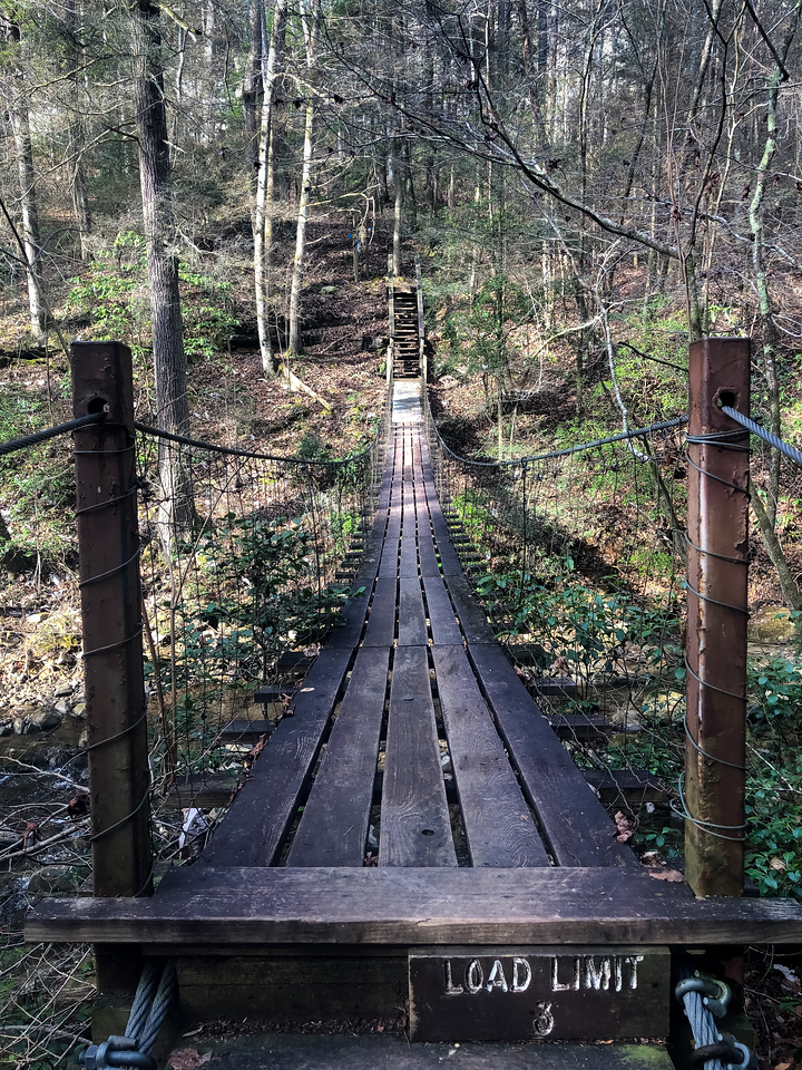 The trail leads to a long suspension bridge that crosses over Middle Creek.
