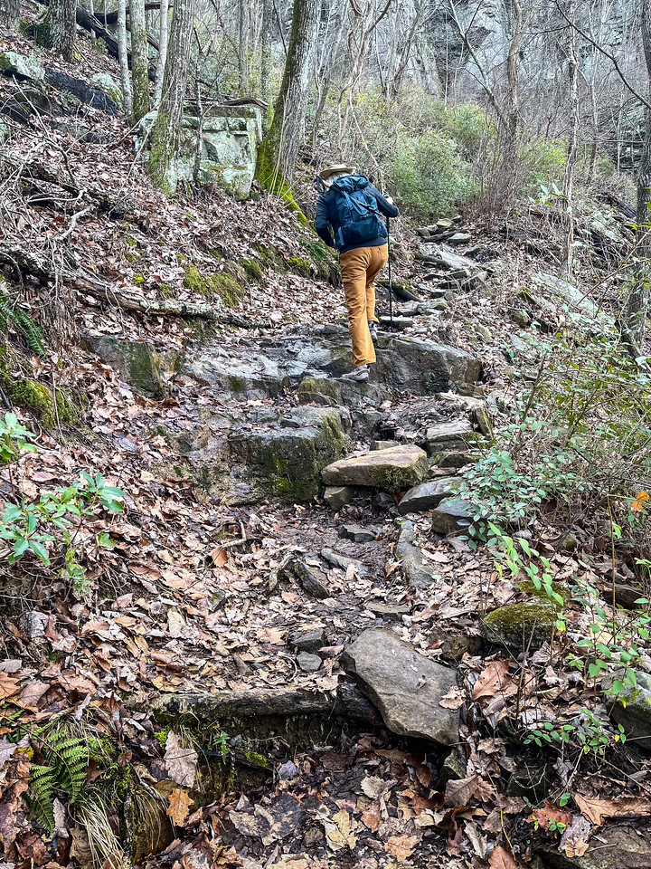 A person hikes up a steep, rocky trail in the forest.