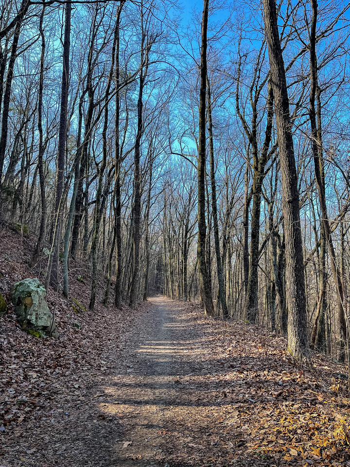 A wide trail that had been an old mountain road.