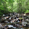 A mountain stream flowing around rocks and through a forest in the Great Smoky Mountains National Park.