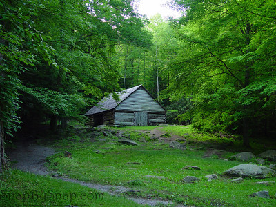 A dirt trail leading to a rustic settlers cabin surrounded by green forest in the Great Smoky Mountains National Park.
