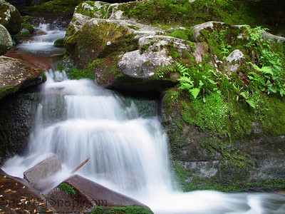 A small mountain stream cascades over slabs of stone and moss in the Great Smoky Mountains National Park.