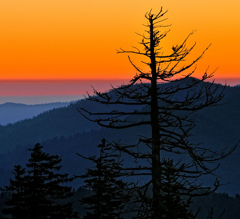 View from Clingmans Dome - Great Smoky Mountains National Park