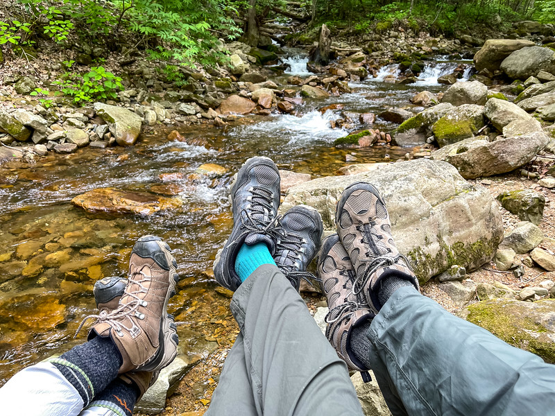 Three pairs of legs on watery creek.