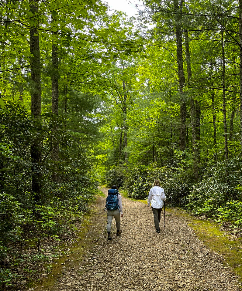 Two people walking up trail.