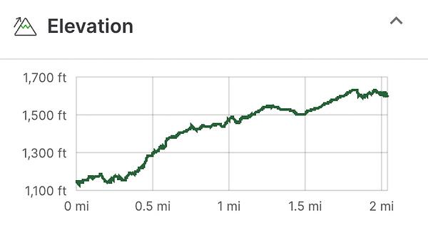 Elevation map of roaring creek hike