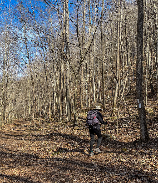 A woman hiking up the trail, away from the creek.