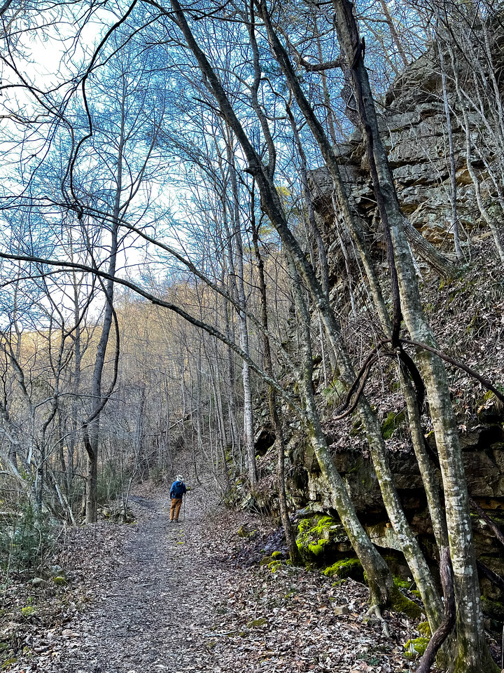 A man walking the trail with the creek on the left and rocky wall on the right.