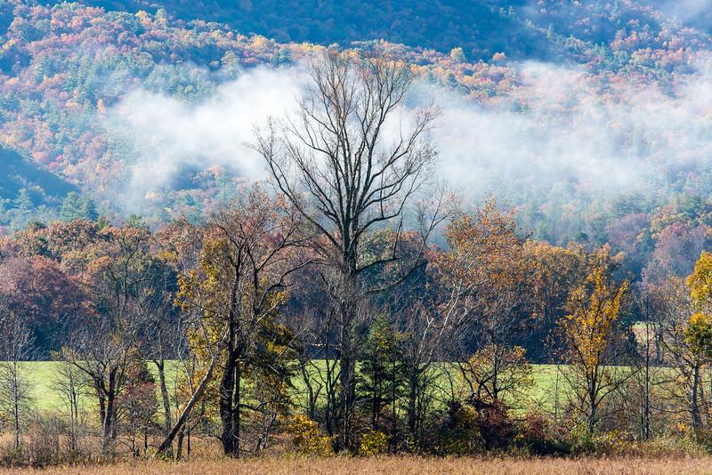 Great Smoky Mountains National Park - October 2014