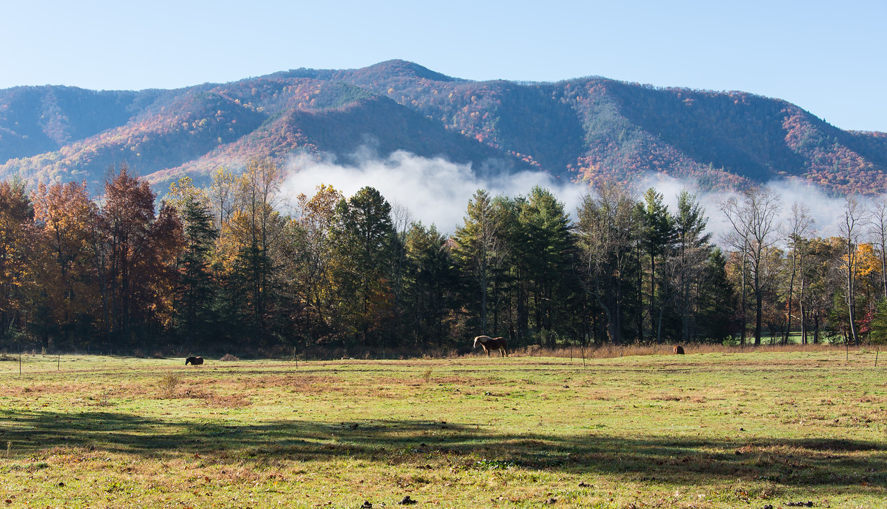 Great Smoky Mountains National Park - October 2014