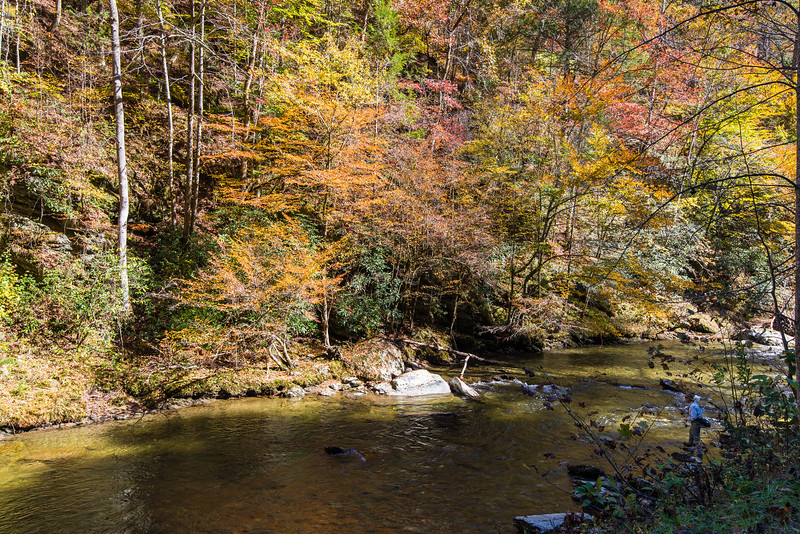 Fly fisherman in Great Smoky Mountains National Park - October 2014
