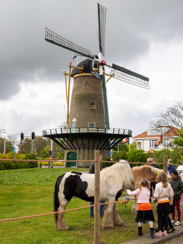 King's Day Monster Mill
