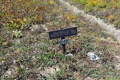 Fox Creek Trailhead