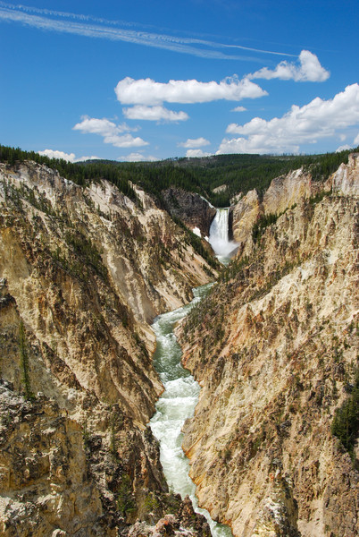 Yellowstone Falls and River