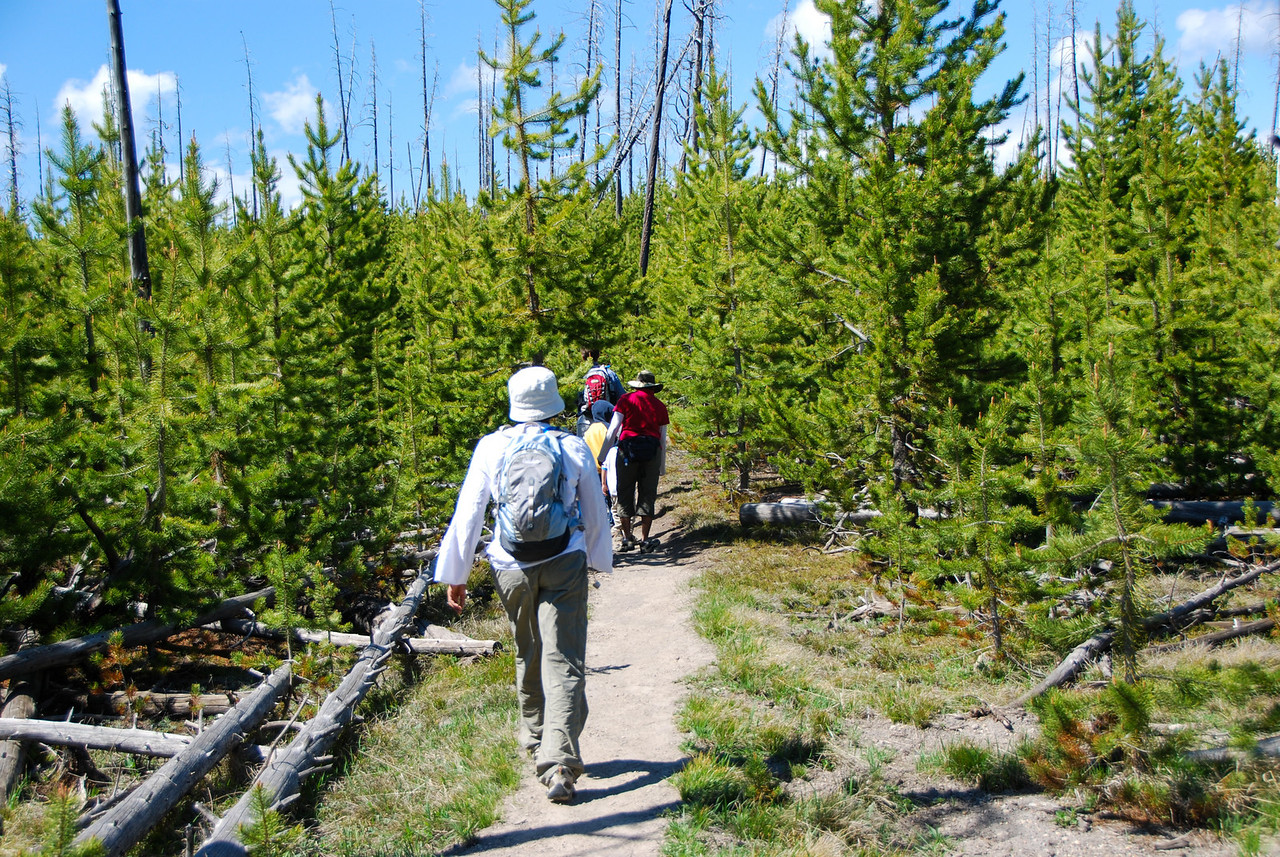 The trail to Duck Lake