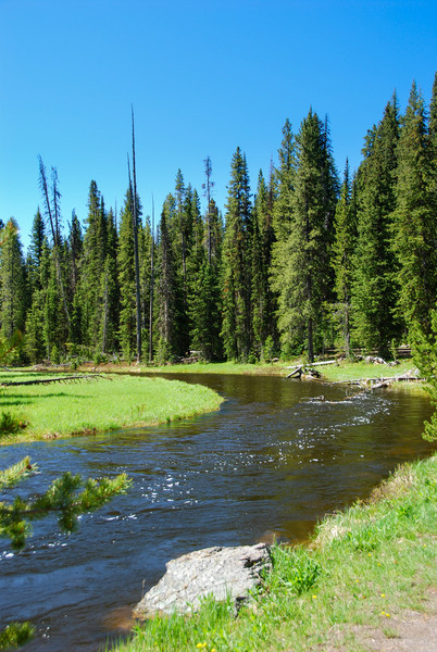 The Firehole River on the way to Lone Star Geyser