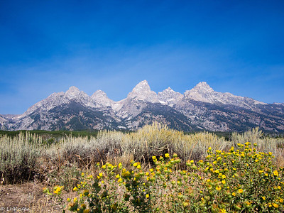 Tetons/Yellowstone final