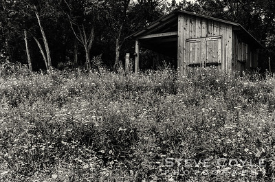 Wildflower Shed