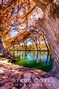Medina Autumn