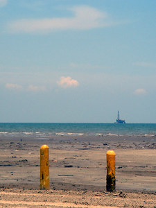 Landscapes_Galveston 0606 001
