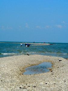 Landscapes_Galveston 0606 004