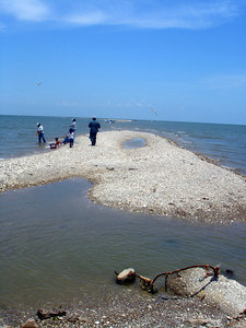 Landscapes_Galveston 0606 003
