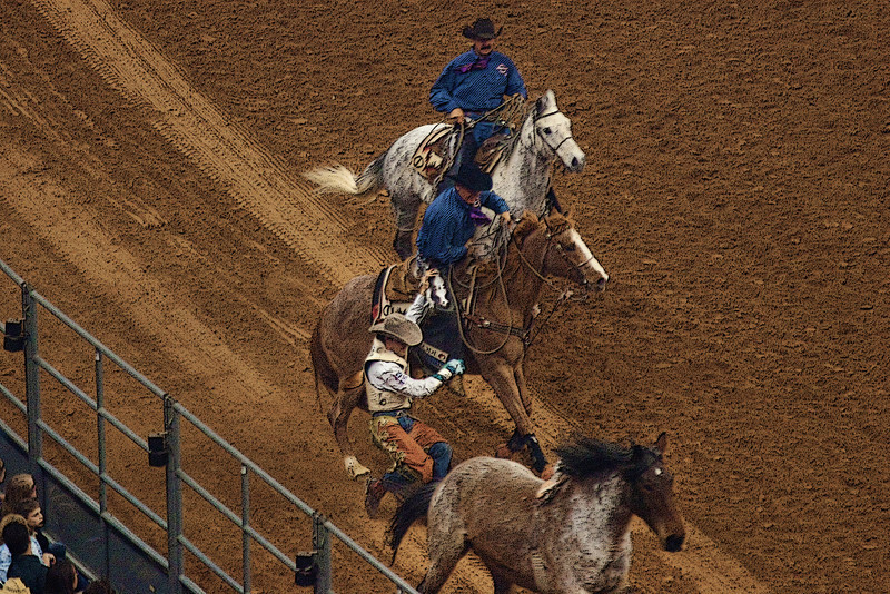 Dismount After A great Ride -Houston Livestock and Rodeo Show 2012