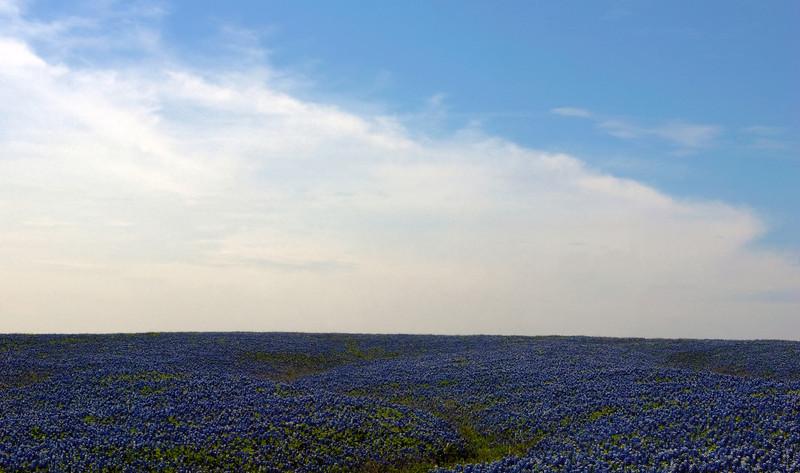 Texas Big Sky and Bluebonnets -Ennis, Texas, April 2012