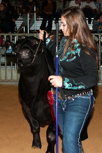 Kylie and Bama competing in 2012 Future Farmers of America with 2nd Place!