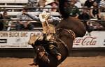Bronco Center Stage -Pasadena Rodeo 2012