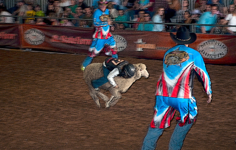 Mutton Bustin' -Houston Livestock and Rodeo 2012
