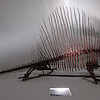 Dimetrodon<br /> <br /> Houston Museum of Natural Science