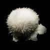 Mesolite & Fluorapophyllite<br /> <br /> Houston Museum of Natural Science