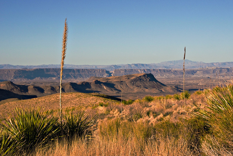 Mesa De Anguila and Santa Elena Canyon from Sotol Vista with Kit Mountain in the foreground.