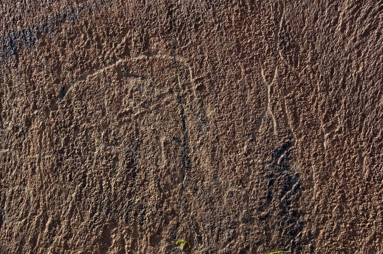 Petroglyphs at Indian Head.