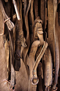 Horse tack hanging in the blackmith room at Fort Leaton.