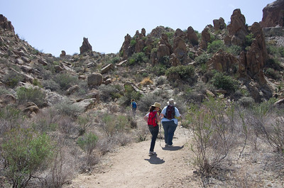 Grapevine Hills: Trail to Balanced Rock.
