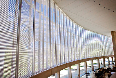 Lobby Windows