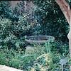 Bird Bath Area - Botanical Gardens - Fort Worth, TX  3-11-00