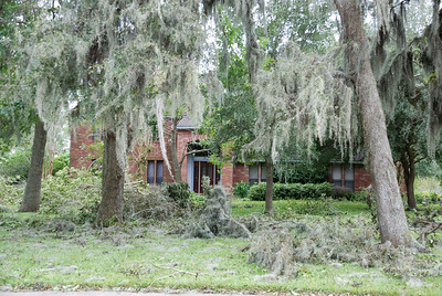 Our home in Lake Jackson -- no house damage!  Just lots of trees/limbs and no power for over a week.