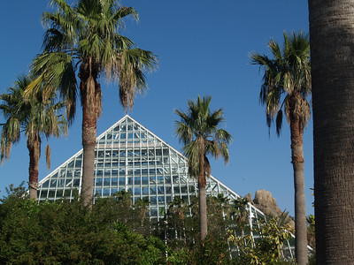 pyramid building at the Moody Gardens aquarium