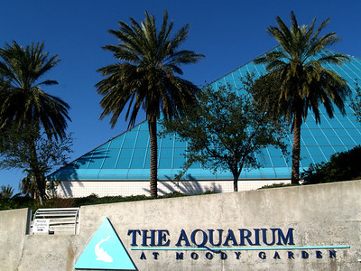 Largest pyramid building at the Moody Gardens aquarium