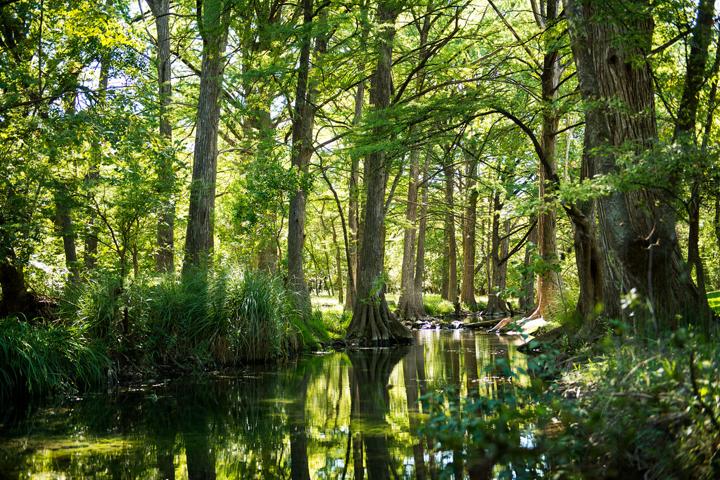 Texas Travel Photography - Cypress Creek - Wimberley - Texas - USA