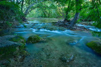 Barton Creek greenbelt in Austin, Texas.