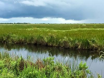 Shoveler Pond Loop