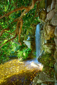Zilker Botanical Garden in Austin, TX